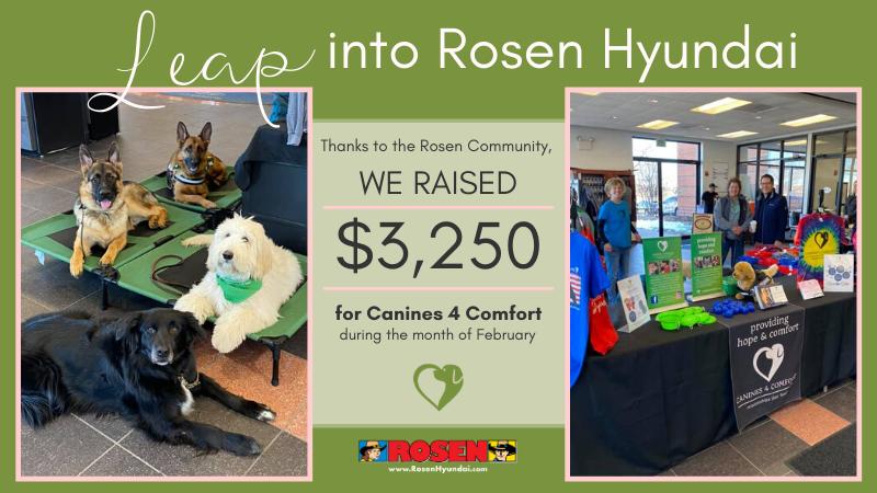Leap Into Rosen Hyundai Canines 4 Comfort Recap